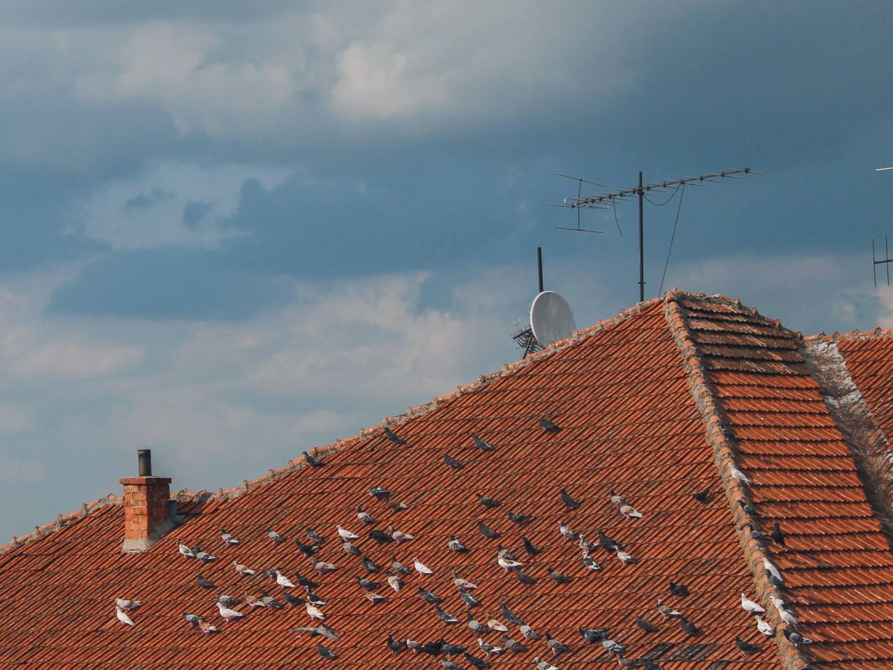 What Are The Different Types Of Roof Linings/Underlay?